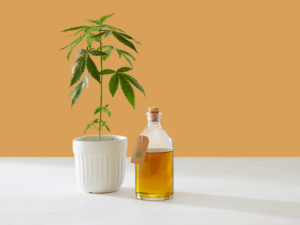 Cannabis Oil and Flower