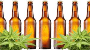 Cannabis Flower with Bear Bottles